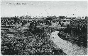 Hemp postcard bw